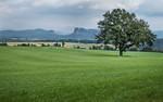 Blick auf Kleine und Hohe Liebe aus Richtung Kleinhennersdorf (Sächsische Schweiz)