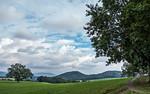 Bei Kleinhennersdorf (Sächsische Schweiz)
